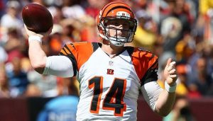 Cincinnati Bengals 2014 Season Predictions